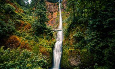 bigstock-Multnomah-Falls-Columbia-Rive-138034115
